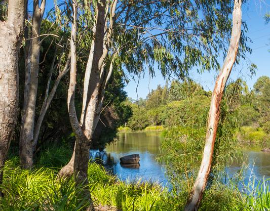 Toowoomba Parkland